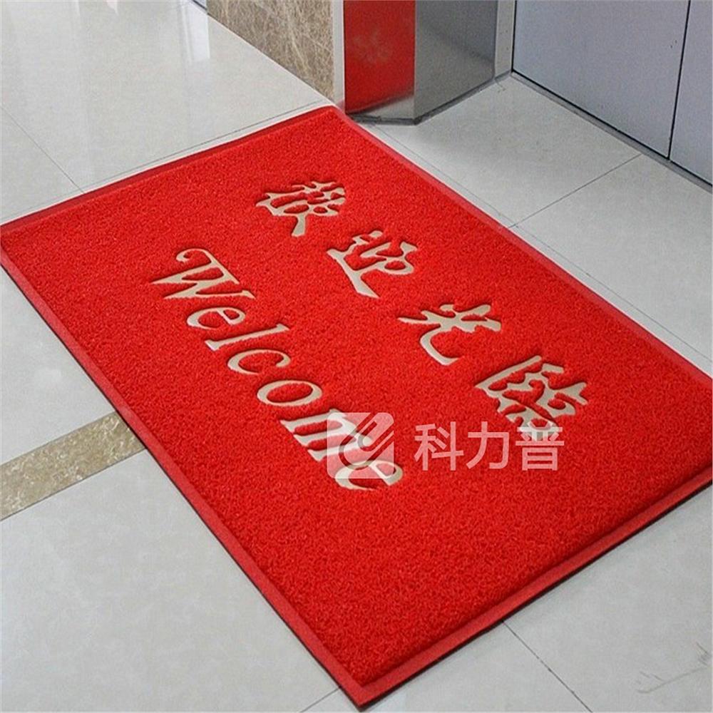 国产 欢迎光临地毯 60*80cm