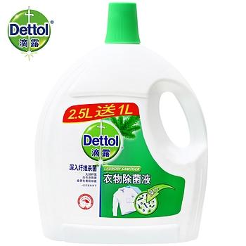 2.5L+1L滴露衣物除菌液松木