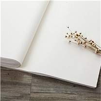 金光创利/CopyPaper 大白纸 846mm*1194mm  每卷100张