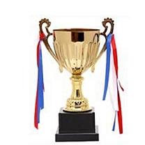 国产 定制奖杯 总高38CM 直径16CM 净重1300g 材质:杯碗和耳身是金属,其他部分是硬塑(DZ) 国网专用