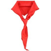 国产红领巾 1.2m 小学生