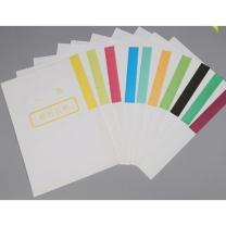 百雪 干部人事档案分类纸 21cm*29.7cm (彩色)
