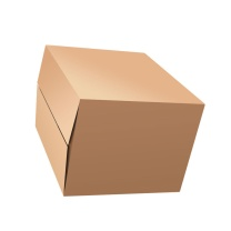 QDZX 纸皮箱 60*40*50 10个/捆 无扣手