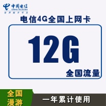 上海电信 4G上网资费卡 年12G (全国12G)