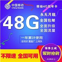 移动 上网资费卡 全国48G 移动4G