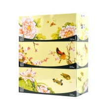 洁云 Hygienix 福瑞国色 双层盒装面巾纸 132504/138114 200抽/盒  3盒/提 12提/箱