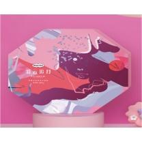 哈根达斯 Haagen-Daze 彩云追月月饼礼盒 698型 645g  (2019年)