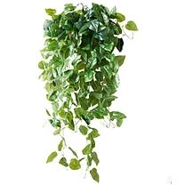 美天地 仿真壁挂绿萝吊兰客厅藤蔓装饰仿真绿萝盆栽垂吊装饰仿真植物 cxl-66