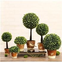 国产 仿真植物盆栽盆景小摆件 绿植装饰