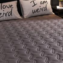 南极人 加厚可折叠防滑床垫 1.5m (南网链接)