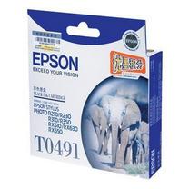 爱普生 EPSON 墨盒 T0491 (黑色)