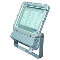 华荣 LED投光灯具 RLEFL319 412*510*108mm (银灰色)