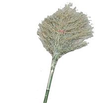 国产 大竹扫把