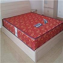 恩隆 ENLONG 薄型床垫 1200*2000*150mm  国电投四川分公司链接 DZ