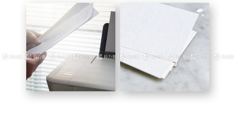 金旗舰 Gold FLAGSHIP 多功能用纸 复印纸 A4 80g  500张/包 (仅限上海北京可售)