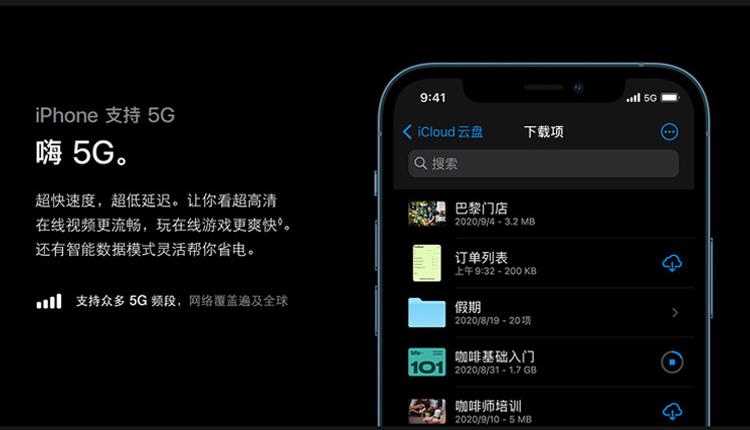 Apple iPhone 12 Pro Max (A2412) 256GB 海蓝色 支持移动联通电信5G 双卡双待手机