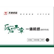 乐活天章 速印纸 16K 60g (淡绿) 7600页/箱