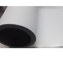 丽标 铝塑贴纸 LB-tz300W (白色)