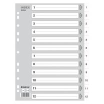 齐心 IX894 A4 11孔 12页 1-12年度PP索引纸 灰(单位:套)