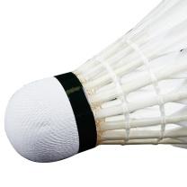 李宁 LI-NING 比赛级羽毛球 A+80  12只装