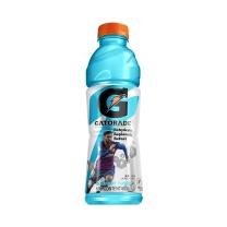佳得乐 运动饮料蓝莓味 600ml*15瓶