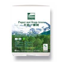 洁云 Hygienix 自由森林擦手纸纸架 159012