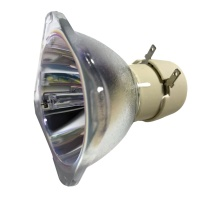 飞利浦 PHILIPS 飞利浦 PHILIPS 投影机灯泡 UHP 225/160W 0.9 E20.9 (适用于 明基 宏基 奥图码 富可视 三菱 三洋等品牌)